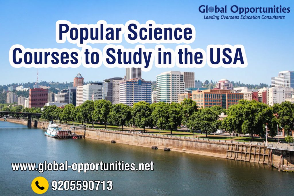 Courses to Study in the USA