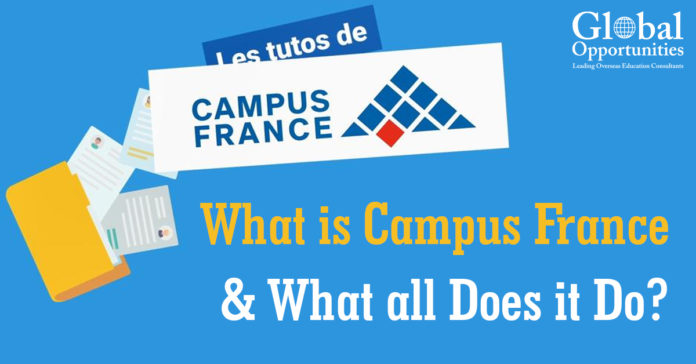 What is campus France?
