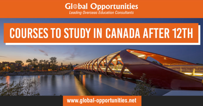 Courses to Study in Canada After 12th