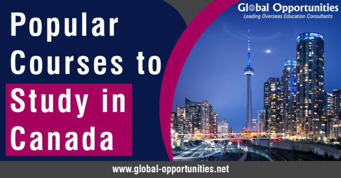Programs to Study in Canada